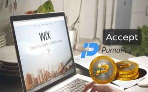 Pumapay sebagai Alat pembayaran