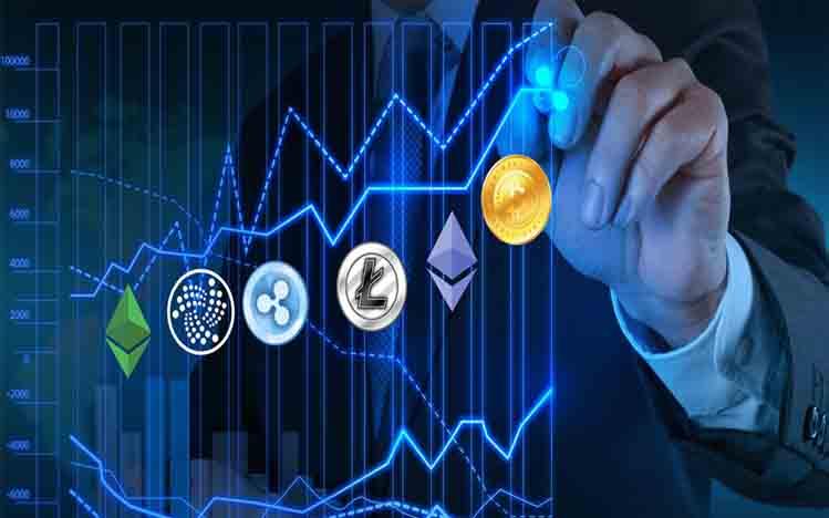 Para Investor Crypto