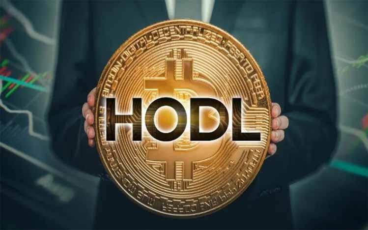 Hodl adalah Strategi Bertahan ala Kripto